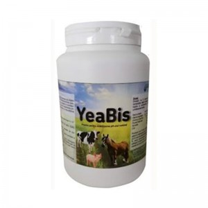 YeaBis, 1 kg