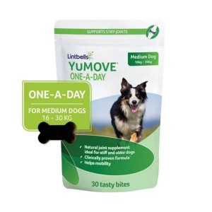 YuMOVE One-A-Day for Medium Dogs, 30 comprimate