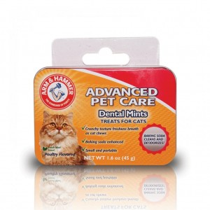 RECOMPENSE PISICA ARM&HAMMER DENTAL MINTS 40 BUC