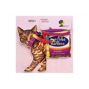 Ham + Lesa pisica BR 91 Card