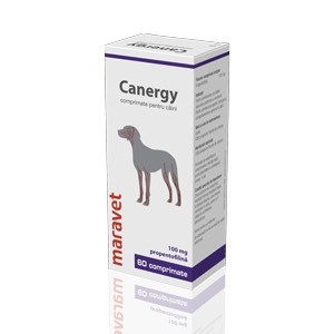 Canergy 100 mg 6 X 10 comprimate