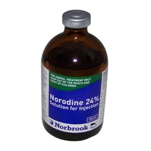 Norodin 24 100 ml