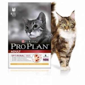 PRO PLAN Pisica ADULT PUI 10 Kg