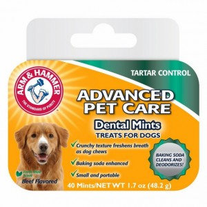 ARM&HAMMER RECOMPENSE CAINE DENTAL MINTS 40 BUC