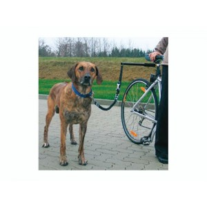 Dispozitiv caine Safety Bike