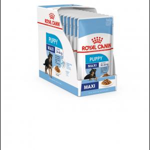 Royal Canin Maxi Puppy, 10 plicuri X 140 g