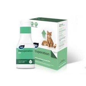 Viyo Recuperation Cat -150 ml
