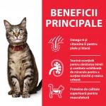 Hill's SP Feline Adult Chicken, 15 kg - beneficii