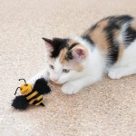 Jucarie pisica Kong Albinuta