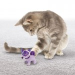 Jucarie pisica Kong Pisica