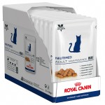 Royal Canin Neutered Adult Maintenance 12 plicuri x 100 g bax