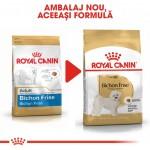 Royal Canin Bichon Frise Adult - nou