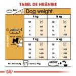 Royal Canin Bichon Frise Adult - hranire