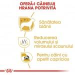 Royal Canin Maltese Adult - beneficii