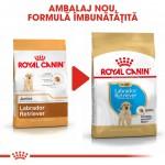 Royal Canin Labrador Puppy - nou