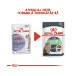 Royal Canin Digest Sensitive, 12 plicuri x 85g