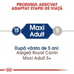 Royal Canin Maxi Adult, 4 kg - talie