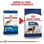 Royal Canin Maxi Adult, 4 kg - nou