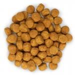 Hill's SP Adult Advanced Fitness Medium hrana pentru caini cu pui 12 kg