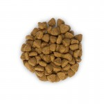 Hill's SP Kitten Healthy Development hrana pentru pisici cu pui 2 kg