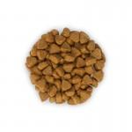 Hill's SP Kitten Healthy Development hrana pentru pisici cu ton 400 g