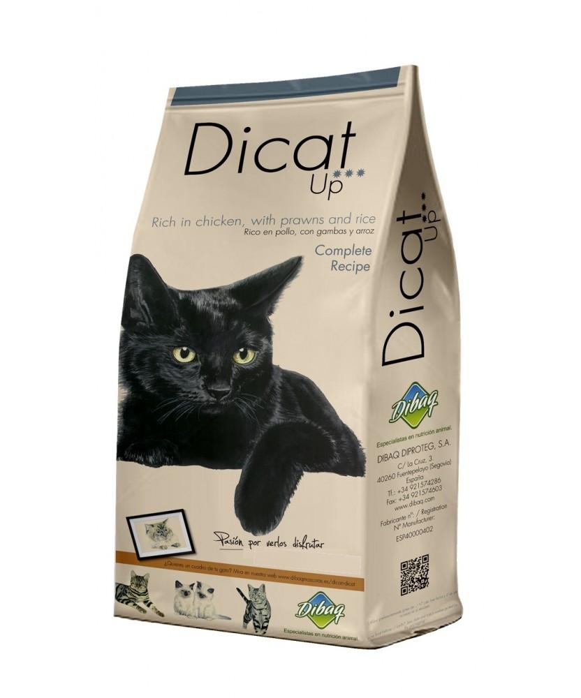Dibaq DNM Premium Dican Up Complete Recipe, 3kg imagine