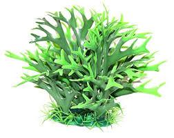 Decor Planta Feriga 20x16 cm imagine