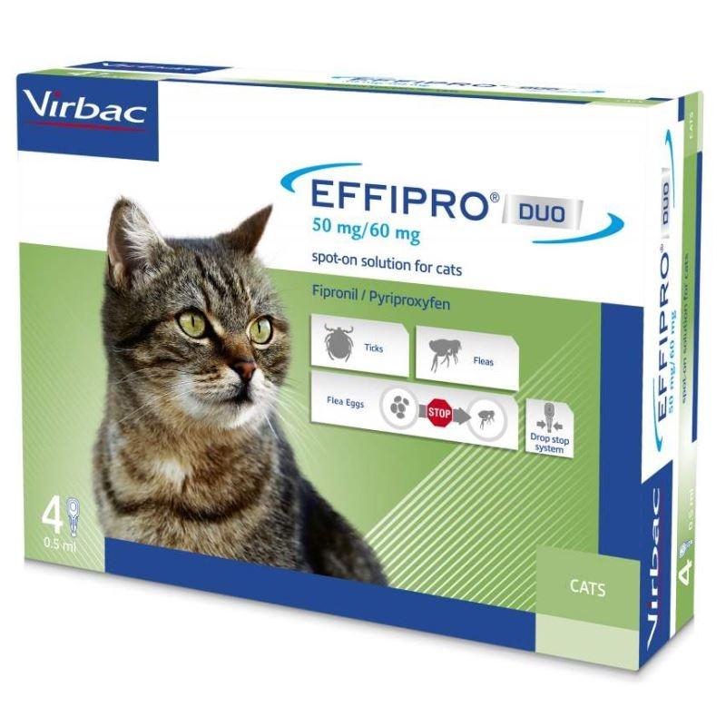 Effipro Duo Cat, 4 pipete imagine