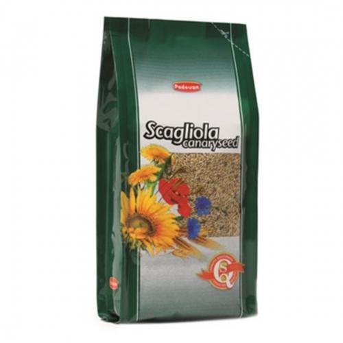 Hrana pasari, Padovan Scagliola-Glant, 20 kg imagine