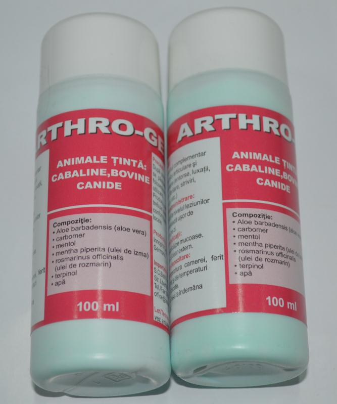 Arthro Gel, 100 Ml