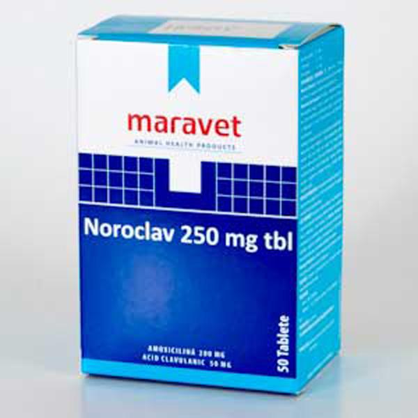 Noroclav 250 mg x 5 Tbl imagine