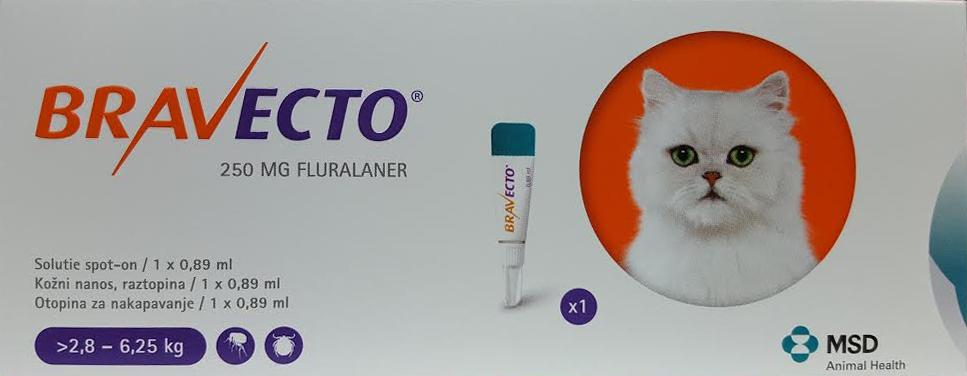 Bravecto 250 Mg Solutie Spot-on Pentru Pisici De Talie Medie (>2.8 – 6.25 Kg)