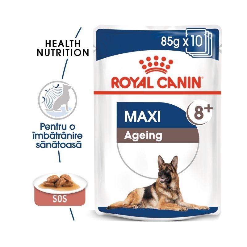 Royal Canin Maxi Ageing 8+ plic 140 g imagine