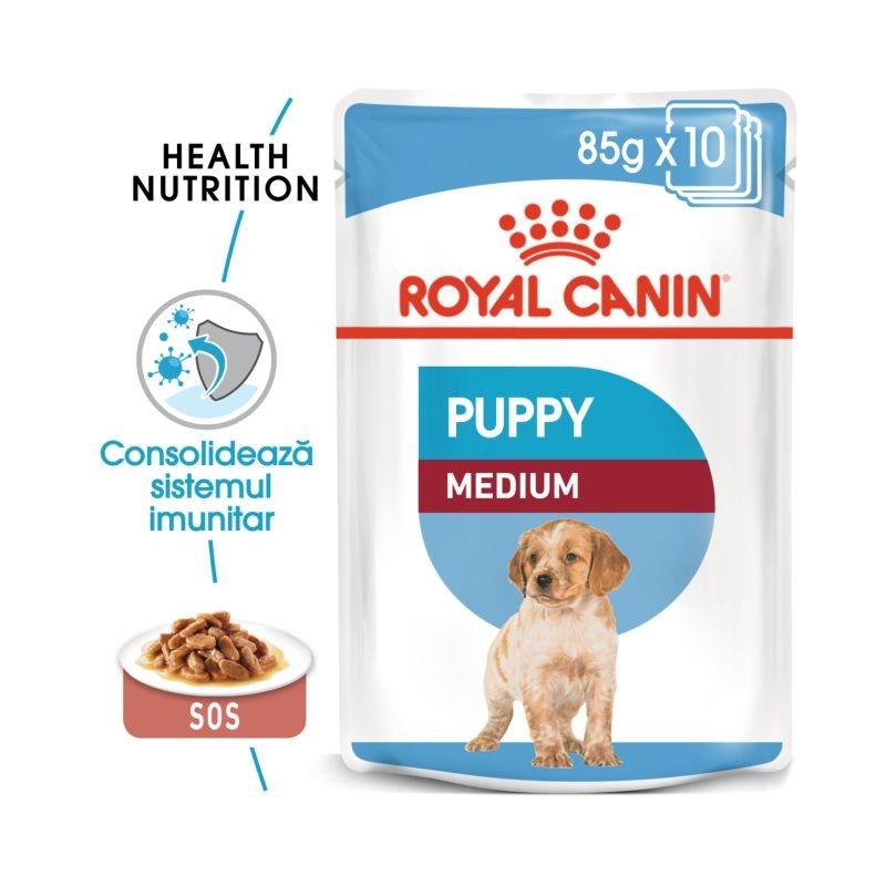 Royal Canin Wet Medium Puppy, 10 plicuri x 85 g imagine