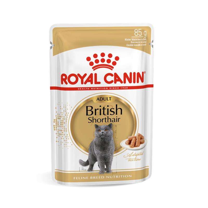 Royal Canin British Shorthair, 1 plic x 85 g imagine