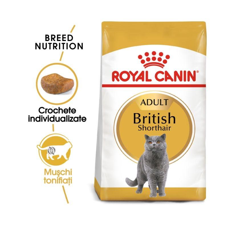 Royal Canin British Shorthair Adult imagine