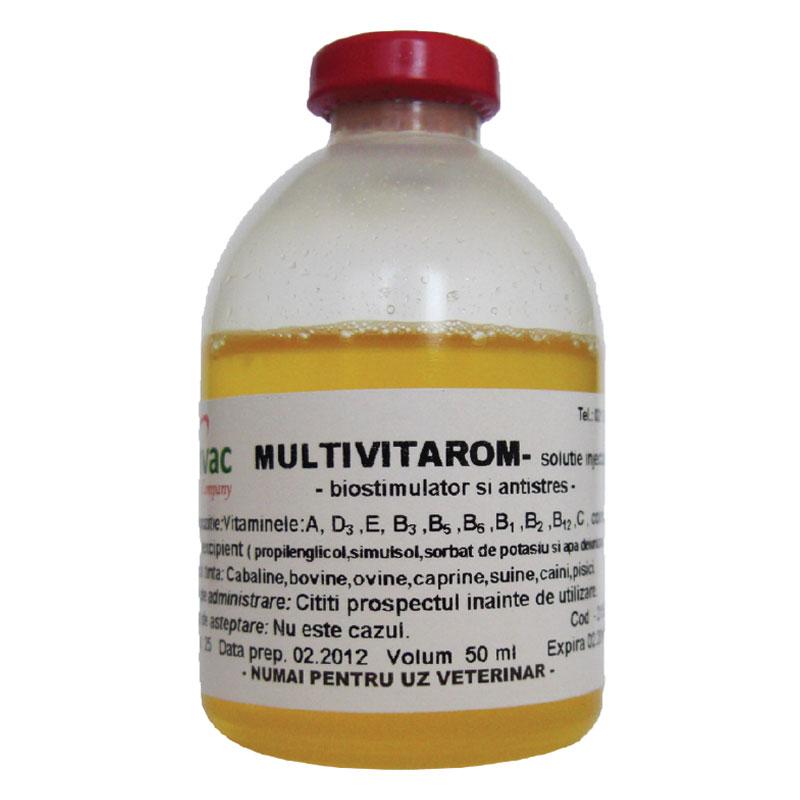 Solutie injectabilă MULTIVITAROM 100 ml imagine