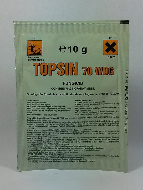TOPSIN 10g imagine