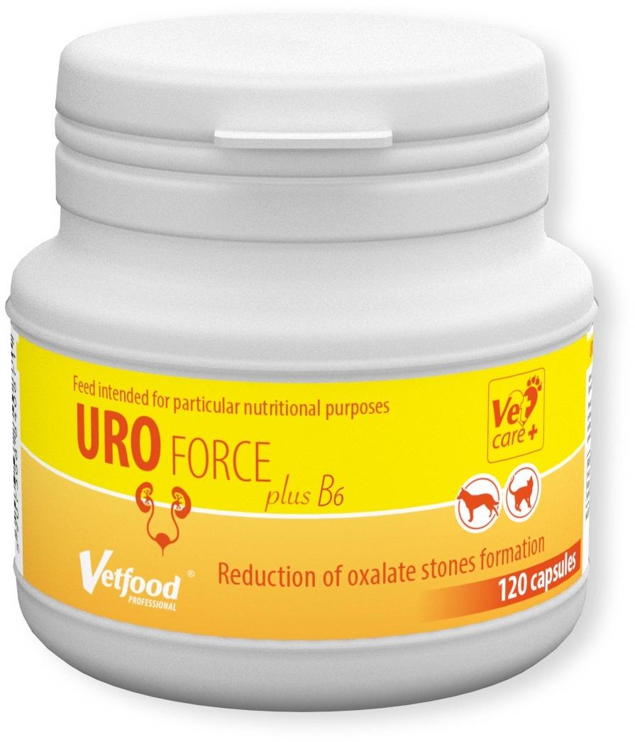 URO FORCE plus B6, 120 capsule imagine