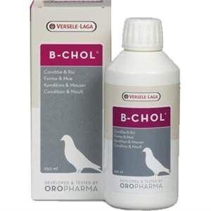 B-Chol, 250 ml imagine