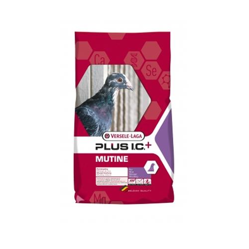 Hrana porumbei, Versele-Laga Mutine Plus IC+, 20 kg imagine