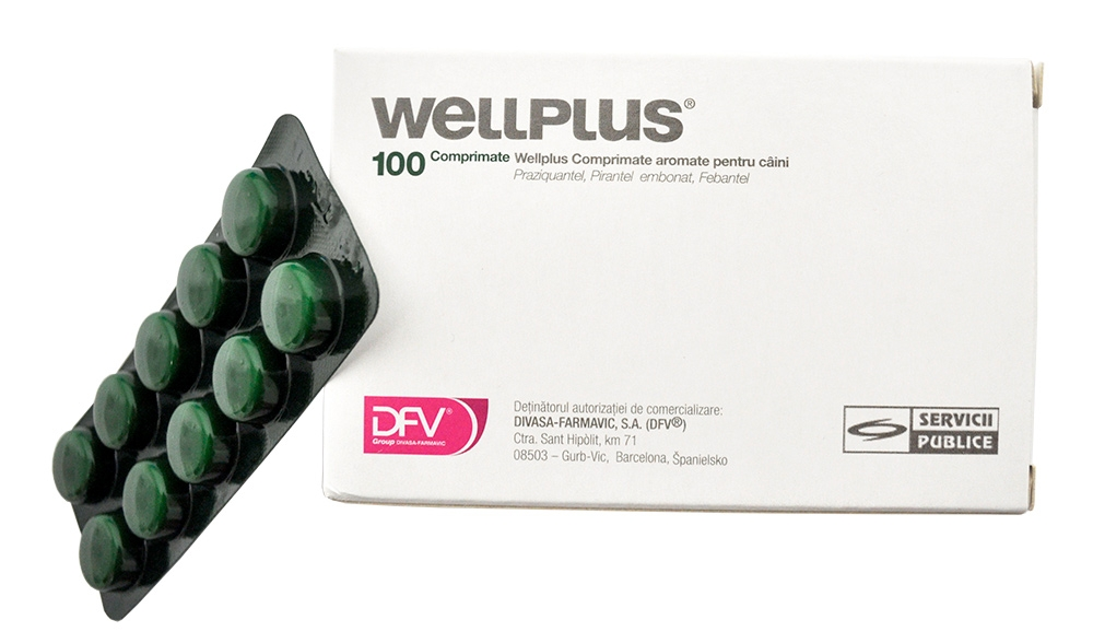 Wellplus, 100 tablete imagine