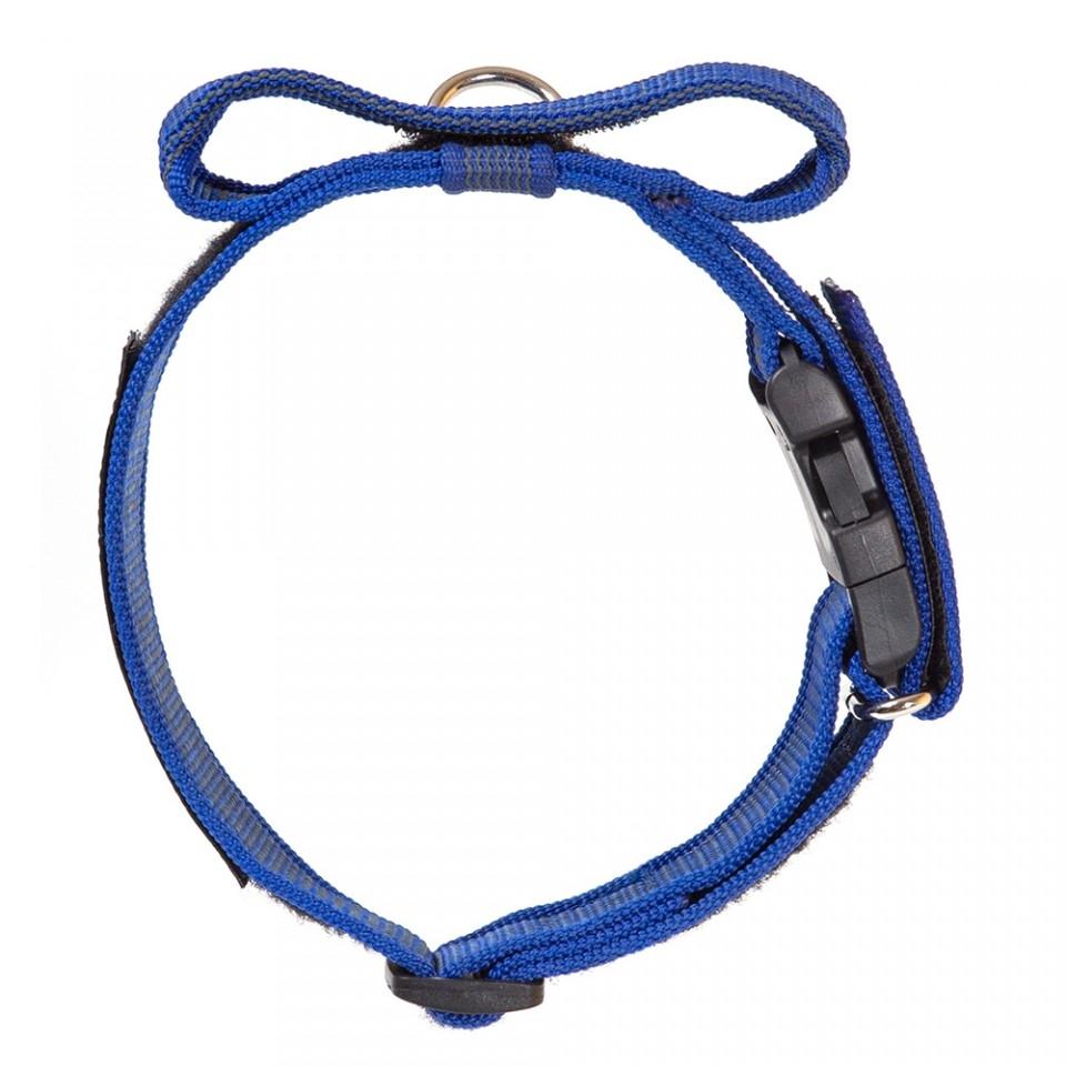 Zgarda K9 nylon cu maner, 50 mm, albastra imagine