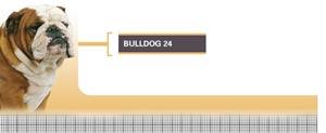 Royal Canin Bulldog Adult - Hrana Uscata Caini Adulti din Rasa Bulldog