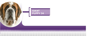 Royal Canin Giant Puppy - Hrana Uscata Catei Talie Giant