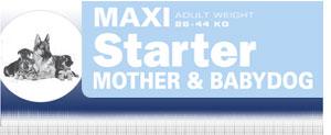 Royal Canin Maxi Starter - Hrana Uscata Superpremium pentru Catei de Talie Mare